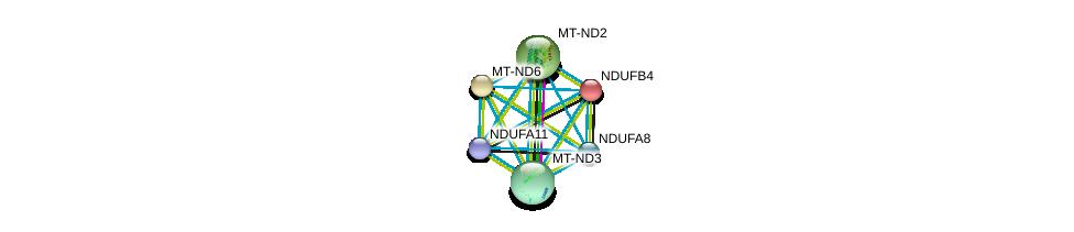 http://string-db.org/version_10/api/image/networkList?limit=0&targetmode=proteins&caller_identity=gene_cards&network_flavor=evidence&identifiers=9606.ENSP00000184266%0d%0a9606.ENSP00000389160%0d%0a9606.ENSP00000354665%0d%0a9606.ENSP00000362873%0d%0a9606.ENSP00000355206%0d%0a9606.ENSP00000355046%0d%0a