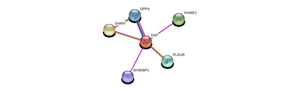 http://string-db.org/version_10/api/image/networkList?limit=0&targetmode=proteins&caller_identity=gene_cards&network_flavor=evidence&identifiers=9606.ENSP00000188790%0d%0a9606.ENSP00000262854%0d%0a9606.ENSP00000380921%0d%0a9606.ENSP00000339328%0d%0a9606.ENSP00000353731%0d%0a9606.ENSP00000237527%0d%0a
