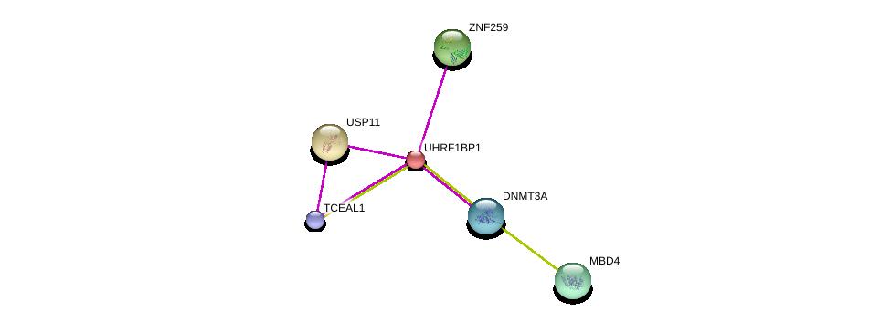 http://string-db.org/version_10/api/image/networkList?limit=0&targetmode=proteins&caller_identity=gene_cards&network_flavor=evidence&identifiers=9606.ENSP00000192788%0d%0a9606.ENSP00000218348%0d%0a9606.ENSP00000227322%0d%0a9606.ENSP00000361707%0d%0a9606.ENSP00000264709%0d%0a9606.ENSP00000249910%0d%0a