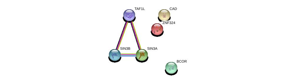 http://string-db.org/version_10/api/image/networkList?limit=0&targetmode=proteins&caller_identity=gene_cards&network_flavor=evidence&identifiers=9606.ENSP00000196482%0d%0a9606.ENSP00000353622%0d%0a9606.ENSP00000369131%0d%0a9606.ENSP00000367705%0d%0a9606.ENSP00000264705%0d%0a9606.ENSP00000418379%0d%0a