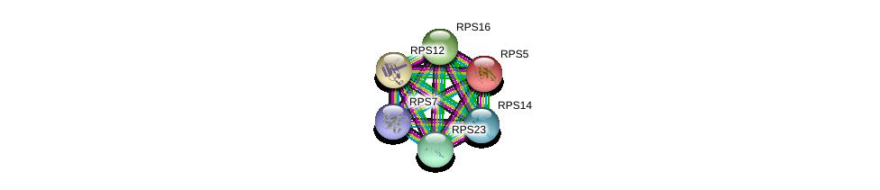 http://string-db.org/version_10/api/image/networkList?limit=0&targetmode=proteins&caller_identity=gene_cards&network_flavor=evidence&identifiers=9606.ENSP00000196551%0d%0a9606.ENSP00000251453%0d%0a9606.ENSP00000296674%0d%0a9606.ENSP00000230050%0d%0a9606.ENSP00000311028%0d%0a9606.ENSP00000339095%0d%0a