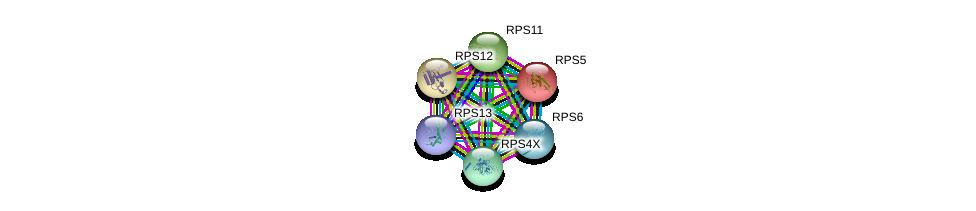 http://string-db.org/version_10/api/image/networkList?limit=0&targetmode=proteins&caller_identity=gene_cards&network_flavor=evidence&identifiers=9606.ENSP00000196551%0d%0a9606.ENSP00000270625%0d%0a9606.ENSP00000230050%0d%0a9606.ENSP00000369757%0d%0a9606.ENSP00000362744%0d%0a9606.ENSP00000435777%0d%0a