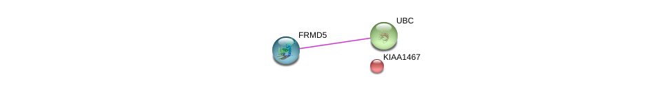 http://string-db.org/version_10/api/image/networkList?limit=0&targetmode=proteins&caller_identity=gene_cards&network_flavor=evidence&identifiers=9606.ENSP00000197268%0d%0a9606.ENSP00000403067%0d%0a9606.ENSP00000344818%0d%0a