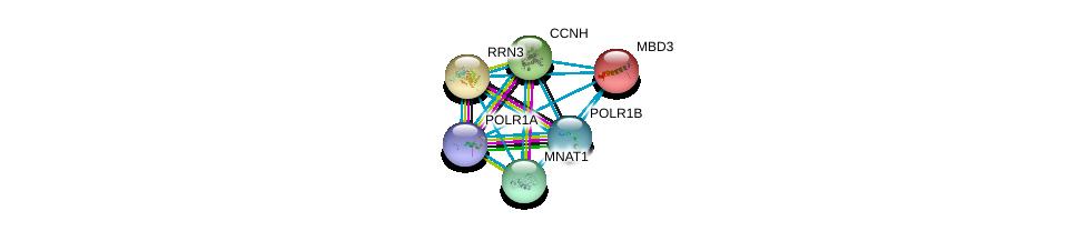 http://string-db.org/version_10/api/image/networkList?limit=0&targetmode=proteins&caller_identity=gene_cards&network_flavor=evidence&identifiers=9606.ENSP00000198767%0d%0a9606.ENSP00000263857%0d%0a9606.ENSP00000263331%0d%0a9606.ENSP00000156825%0d%0a9606.ENSP00000256897%0d%0a9606.ENSP00000261245%0d%0a