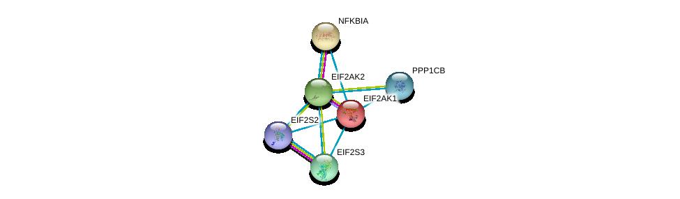 http://string-db.org/version_10/api/image/networkList?limit=0&targetmode=proteins&caller_identity=gene_cards&network_flavor=evidence&identifiers=9606.ENSP00000199389%0d%0a9606.ENSP00000233057%0d%0a9606.ENSP00000253039%0d%0a9606.ENSP00000364119%0d%0a9606.ENSP00000296122%0d%0a9606.ENSP00000216797%0d%0a