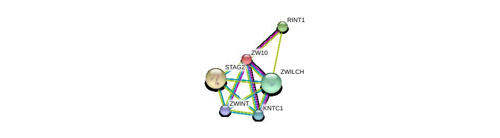 http://string-db.org/version_10/api/image/networkList?limit=0&targetmode=proteins&caller_identity=gene_cards&network_flavor=evidence&identifiers=9606.ENSP00000200135%0d%0a9606.ENSP00000328236%0d%0a9606.ENSP00000257700%0d%0a9606.ENSP00000311429%0d%0a9606.ENSP00000363055%0d%0a9606.ENSP00000218089%0d%0a