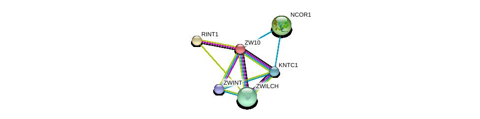 http://string-db.org/version_10/api/image/networkList?limit=0&targetmode=proteins&caller_identity=gene_cards&network_flavor=evidence&identifiers=9606.ENSP00000200135%0d%0a9606.ENSP00000328236%0d%0a9606.ENSP00000257700%0d%0a9606.ENSP00000311429%0d%0a9606.ENSP00000363055%0d%0a9606.ENSP00000268712%0d%0a