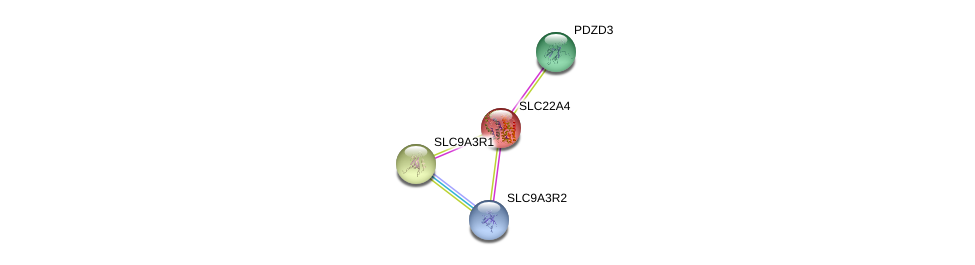 http://string-db.org/version_10/api/image/networkList?limit=0&targetmode=proteins&caller_identity=gene_cards&network_flavor=evidence&identifiers=9606.ENSP00000200652%0d%0a9606.ENSP00000262613%0d%0a9606.ENSP00000262613%0d%0a9606.ENSP00000408005%0d%0a9606.ENSP00000347742%0d%0a