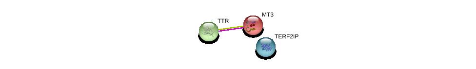 http://string-db.org/version_10/api/image/networkList?limit=0&targetmode=proteins&caller_identity=gene_cards&network_flavor=evidence&identifiers=9606.ENSP00000200691%0d%0a9606.ENSP00000237014%0d%0a9606.ENSP00000300086%0d%0a