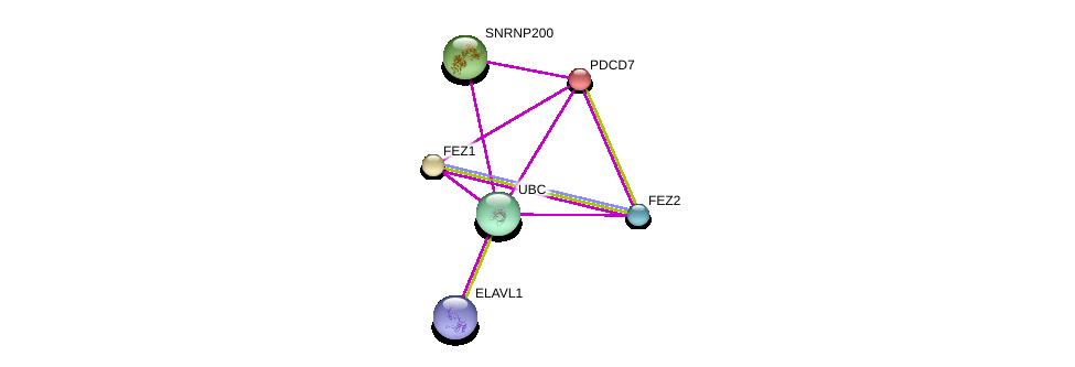 http://string-db.org/version_10/api/image/networkList?limit=0&targetmode=proteins&caller_identity=gene_cards&network_flavor=evidence&identifiers=9606.ENSP00000204549%0d%0a9606.ENSP00000317123%0d%0a9606.ENSP00000344818%0d%0a9606.ENSP00000278919%0d%0a9606.ENSP00000368547%0d%0a9606.ENSP00000385269%0d%0a