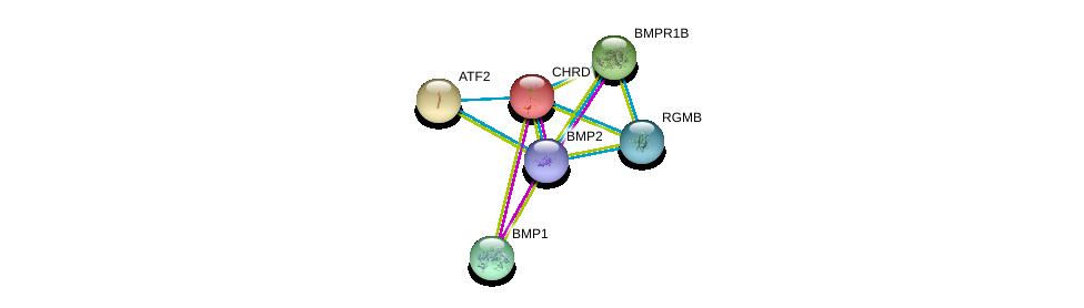 http://string-db.org/version_10/api/image/networkList?limit=0&targetmode=proteins&caller_identity=gene_cards&network_flavor=evidence&identifiers=9606.ENSP00000204604%0d%0a9606.ENSP00000305714%0d%0a9606.ENSP00000368104%0d%0a9606.ENSP00000264110%0d%0a9606.ENSP00000264568%0d%0a9606.ENSP00000308219%0d%0a