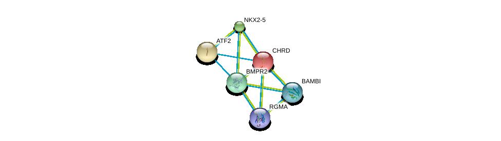 http://string-db.org/version_10/api/image/networkList?limit=0&targetmode=proteins&caller_identity=gene_cards&network_flavor=evidence&identifiers=9606.ENSP00000204604%0d%0a9606.ENSP00000364683%0d%0a9606.ENSP00000363708%0d%0a9606.ENSP00000264110%0d%0a9606.ENSP00000452126%0d%0a9606.ENSP00000327758%0d%0a