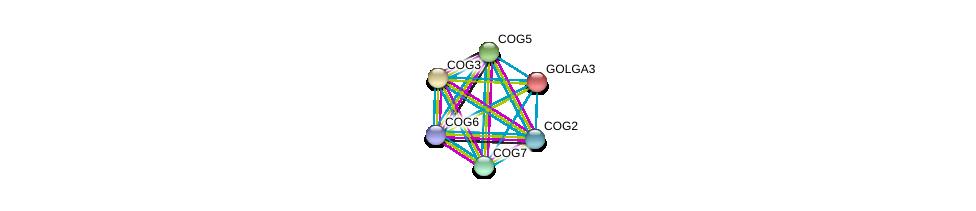 http://string-db.org/version_10/api/image/networkList?limit=0&targetmode=proteins&caller_identity=gene_cards&network_flavor=evidence&identifiers=9606.ENSP00000204726%0d%0a9606.ENSP00000305442%0d%0a9606.ENSP00000258654%0d%0a9606.ENSP00000297135%0d%0a9606.ENSP00000355629%0d%0a9606.ENSP00000397441%0d%0a