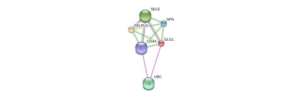 http://string-db.org/version_10/api/image/networkList?limit=0&targetmode=proteins&caller_identity=gene_cards&network_flavor=evidence&identifiers=9606.ENSP00000205061%0d%0a9606.ENSP00000228463%0d%0a9606.ENSP00000353238%0d%0a9606.ENSP00000398632%0d%0a9606.ENSP00000331736%0d%0a9606.ENSP00000344818%0d%0a