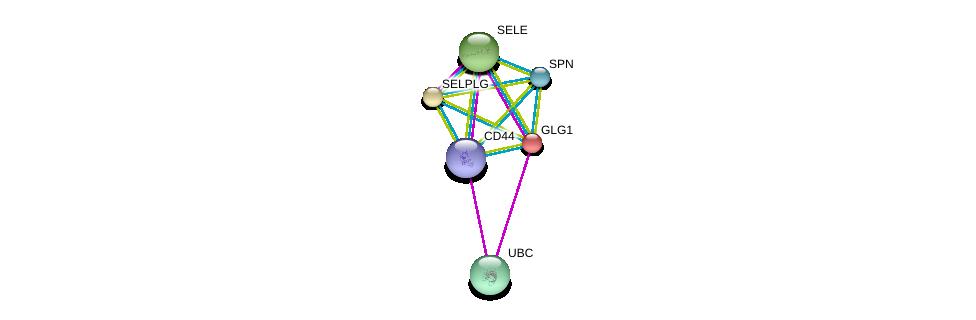 http://string-db.org/version_10/api/image/networkList?limit=0&targetmode=proteins&caller_identity=gene_cards&network_flavor=evidence&identifiers=9606.ENSP00000205061%0d%0a9606.ENSP00000228463%0d%0a9606.ENSP00000353238%0d%0a9606.ENSP00000398632%0d%0a9606.ENSP00000331736%0d%0a9606.ENSP00000344818%0d%0a