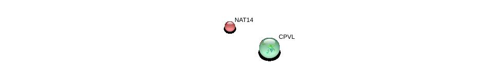 http://string-db.org/version_10/api/image/networkList?limit=0&targetmode=proteins&caller_identity=gene_cards&network_flavor=evidence&identifiers=9606.ENSP00000205194%0d%0a9606.ENSP00000265394%0d%0a