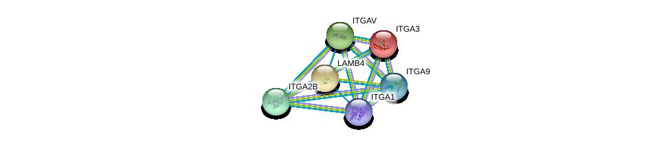 http://string-db.org/version_10/api/image/networkList?limit=0&targetmode=proteins&caller_identity=gene_cards&network_flavor=evidence&identifiers=9606.ENSP00000205386%0d%0a9606.ENSP00000007722%0d%0a9606.ENSP00000261023%0d%0a9606.ENSP00000262407%0d%0a9606.ENSP00000264741%0d%0a9606.ENSP00000282588%0d%0a