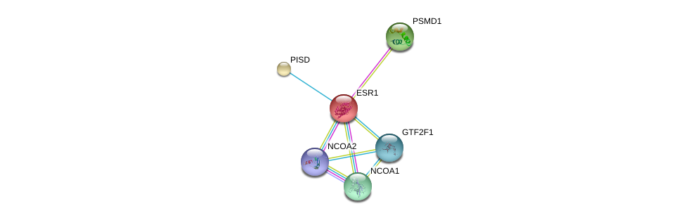 http://string-db.org/version_10/api/image/networkList?limit=0&targetmode=proteins&caller_identity=gene_cards&network_flavor=evidence&identifiers=9606.ENSP00000206249%0d%0a9606.ENSP00000309474%0d%0a9606.ENSP00000399968%0d%0a9606.ENSP00000320940%0d%0a9606.ENSP00000266095%0d%0a9606.ENSP00000377969%0d%0a