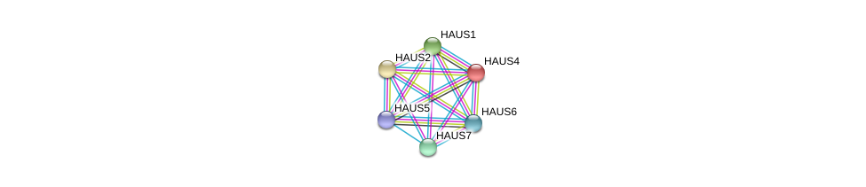 http://string-db.org/version_10/api/image/networkList?limit=0&targetmode=proteins&caller_identity=gene_cards&network_flavor=evidence&identifiers=9606.ENSP00000206474%0d%0a9606.ENSP00000369871%0d%0a9606.ENSP00000260372%0d%0a9606.ENSP00000439056%0d%0a9606.ENSP00000359239%0d%0a9606.ENSP00000282058%0d%0a