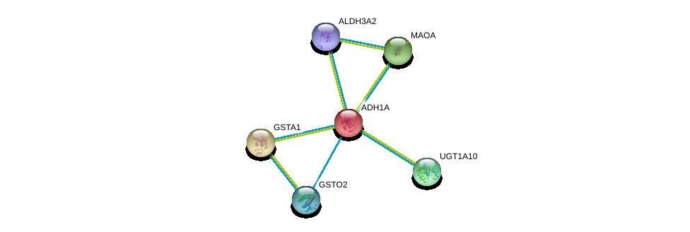 http://string-db.org/version_10/api/image/networkList?limit=0&targetmode=proteins&caller_identity=gene_cards&network_flavor=evidence&identifiers=9606.ENSP00000209668%0d%0a9606.ENSP00000335620%0d%0a9606.ENSP00000340684%0d%0a9606.ENSP00000343838%0d%0a9606.ENSP00000345023%0d%0a9606.ENSP00000345774%0d%0a