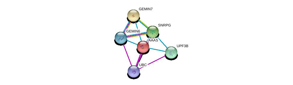 http://string-db.org/version_10/api/image/networkList?limit=0&targetmode=proteins&caller_identity=gene_cards&network_flavor=evidence&identifiers=9606.ENSP00000209873%0d%0a9606.ENSP00000344818%0d%0a9606.ENSP00000270257%0d%0a9606.ENSP00000272348%0d%0a9606.ENSP00000276201%0d%0a9606.ENSP00000281950%0d%0a