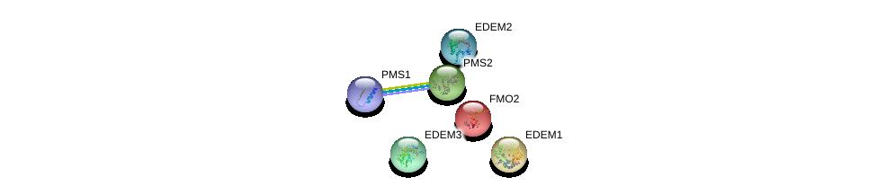 http://string-db.org/version_10/api/image/networkList?limit=0&targetmode=proteins&caller_identity=gene_cards&network_flavor=evidence&identifiers=9606.ENSP00000209929%0d%0a9606.ENSP00000265849%0d%0a9606.ENSP00000406490%0d%0a9606.ENSP00000256497%0d%0a9606.ENSP00000363616%0d%0a9606.ENSP00000318147%0d%0a