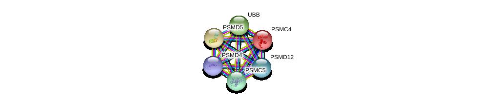 http://string-db.org/version_10/api/image/networkList?limit=0&targetmode=proteins&caller_identity=gene_cards&network_flavor=evidence&identifiers=9606.ENSP00000210313%0d%0a9606.ENSP00000157812%0d%0a9606.ENSP00000304697%0d%0a9606.ENSP00000310572%0d%0a9606.ENSP00000348442%0d%0a9606.ENSP00000357879%0d%0a