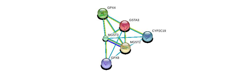 http://string-db.org/version_10/api/image/networkList?limit=0&targetmode=proteins&caller_identity=gene_cards&network_flavor=evidence&identifiers=9606.ENSP00000211122%0d%0a9606.ENSP00000346103%0d%0a9606.ENSP00000423822%0d%0a9606.ENSP00000356859%0d%0a9606.ENSP00000265498%0d%0a9606.ENSP00000360372%0d%0a