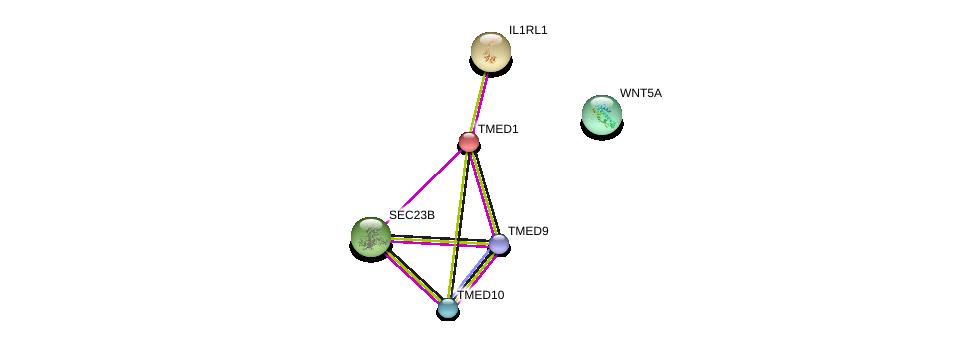 http://string-db.org/version_10/api/image/networkList?limit=0&targetmode=proteins&caller_identity=gene_cards&network_flavor=evidence&identifiers=9606.ENSP00000214869%0d%0a9606.ENSP00000233954%0d%0a9606.ENSP00000303145%0d%0a9606.ENSP00000330945%0d%0a9606.ENSP00000262544%0d%0a9606.ENSP00000264634%0d%0a
