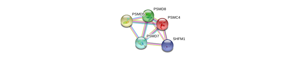 http://string-db.org/version_10/api/image/networkList?limit=0&targetmode=proteins&caller_identity=gene_cards&network_flavor=evidence&identifiers=9606.ENSP00000215071%0d%0a9606.ENSP00000157812%0d%0a9606.ENSP00000210313%0d%0a9606.ENSP00000219313%0d%0a9606.ENSP00000248566%0d%0a9606.ENSP00000248566%0d%0a
