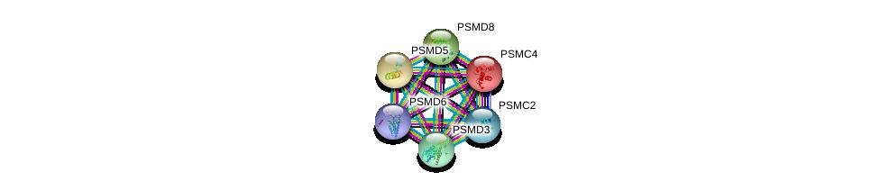 http://string-db.org/version_10/api/image/networkList?limit=0&targetmode=proteins&caller_identity=gene_cards&network_flavor=evidence&identifiers=9606.ENSP00000215071%0d%0a9606.ENSP00000157812%0d%0a9606.ENSP00000210313%0d%0a9606.ENSP00000264639%0d%0a9606.ENSP00000292644%0d%0a9606.ENSP00000295901%0d%0a