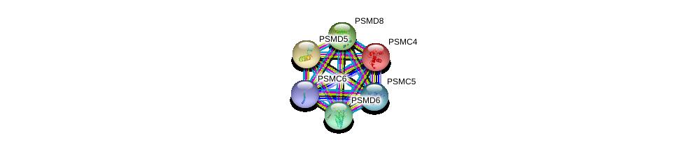 http://string-db.org/version_10/api/image/networkList?limit=0&targetmode=proteins&caller_identity=gene_cards&network_flavor=evidence&identifiers=9606.ENSP00000215071%0d%0a9606.ENSP00000157812%0d%0a9606.ENSP00000401802%0d%0a9606.ENSP00000295901%0d%0a9606.ENSP00000310572%0d%0a9606.ENSP00000210313%0d%0a