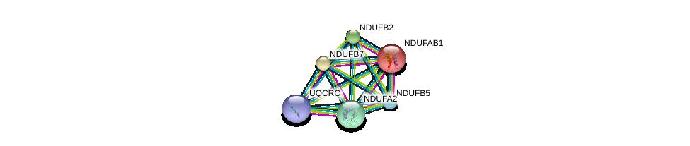 http://string-db.org/version_10/api/image/networkList?limit=0&targetmode=proteins&caller_identity=gene_cards&network_flavor=evidence&identifiers=9606.ENSP00000215565%0d%0a9606.ENSP00000252102%0d%0a9606.ENSP00000007516%0d%0a9606.ENSP00000367934%0d%0a9606.ENSP00000247866%0d%0a9606.ENSP00000259037%0d%0a