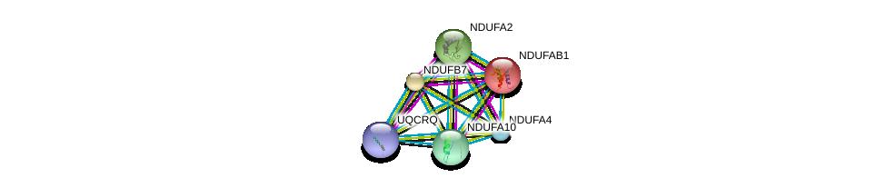 http://string-db.org/version_10/api/image/networkList?limit=0&targetmode=proteins&caller_identity=gene_cards&network_flavor=evidence&identifiers=9606.ENSP00000215565%0d%0a9606.ENSP00000252102%0d%0a9606.ENSP00000007516%0d%0a9606.ENSP00000367934%0d%0a9606.ENSP00000252711%0d%0a9606.ENSP00000339720%0d%0a