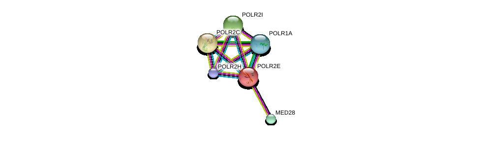 http://string-db.org/version_10/api/image/networkList?limit=0&targetmode=proteins&caller_identity=gene_cards&network_flavor=evidence&identifiers=9606.ENSP00000215587%0d%0a9606.ENSP00000219252%0d%0a9606.ENSP00000221859%0d%0a9606.ENSP00000237380%0d%0a9606.ENSP00000263857%0d%0a9606.ENSP00000296223%0d%0a
