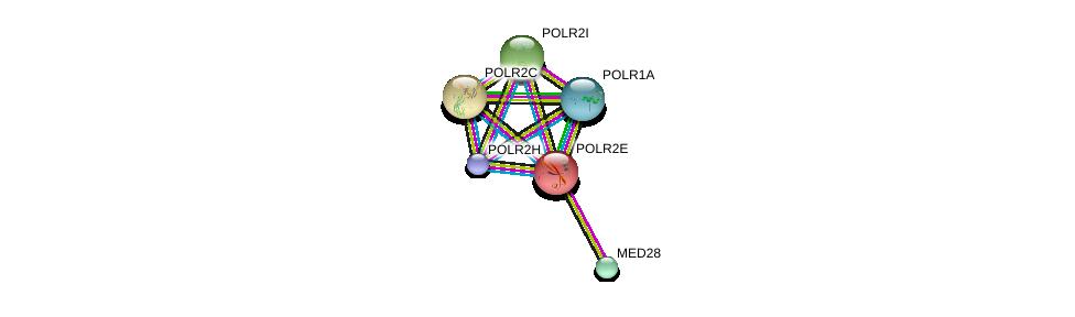 http://string-db.org/version_10/api/image/networkList?limit=0&targetmode=proteins&caller_identity=gene_cards&network_flavor=evidence&identifiers=9606.ENSP00000215587%0d%0a9606.ENSP00000221859%0d%0a9606.ENSP00000219252%0d%0a9606.ENSP00000263857%0d%0a9606.ENSP00000237380%0d%0a9606.ENSP00000296223%0d%0a