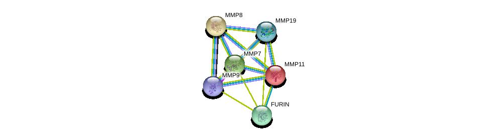http://string-db.org/version_10/api/image/networkList?limit=0&targetmode=proteins&caller_identity=gene_cards&network_flavor=evidence&identifiers=9606.ENSP00000215743%0d%0a9606.ENSP00000313437%0d%0a9606.ENSP00000236826%0d%0a9606.ENSP00000260227%0d%0a9606.ENSP00000268171%0d%0a9606.ENSP00000361405%0d%0a