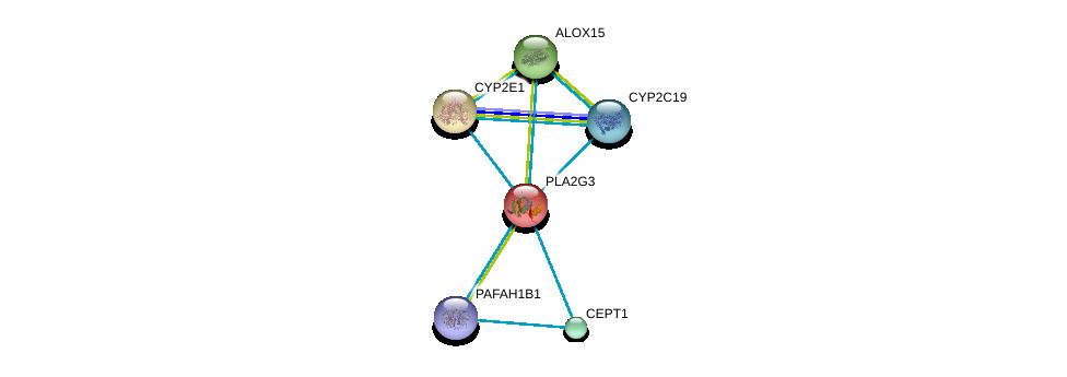 http://string-db.org/version_10/api/image/networkList?limit=0&targetmode=proteins&caller_identity=gene_cards&network_flavor=evidence&identifiers=9606.ENSP00000215885%0d%0a9606.ENSP00000293761%0d%0a9606.ENSP00000360372%0d%0a9606.ENSP00000349696%0d%0a9606.ENSP00000252945%0d%0a9606.ENSP00000380378%0d%0a