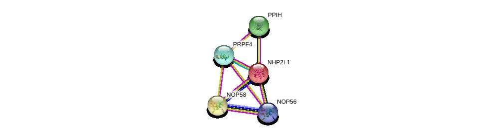 http://string-db.org/version_10/api/image/networkList?limit=0&targetmode=proteins&caller_identity=gene_cards&network_flavor=evidence&identifiers=9606.ENSP00000215956%0d%0a9606.ENSP00000363313%0d%0a9606.ENSP00000306614%0d%0a9606.ENSP00000264279%0d%0a9606.ENSP00000370589%0d%0a9606.ENSP00000370589%0d%0a