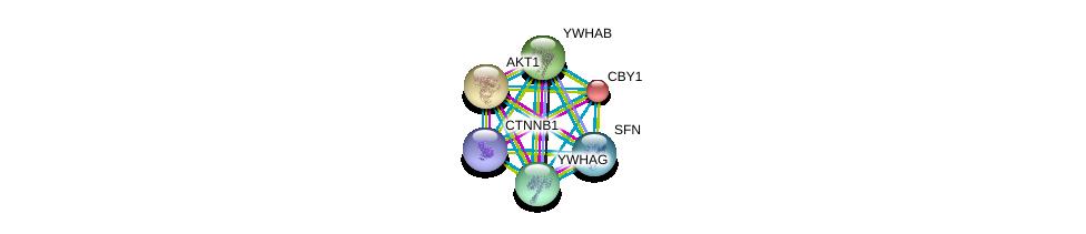 http://string-db.org/version_10/api/image/networkList?limit=0&targetmode=proteins&caller_identity=gene_cards&network_flavor=evidence&identifiers=9606.ENSP00000216029%0d%0a9606.ENSP00000344456%0d%0a9606.ENSP00000270202%0d%0a9606.ENSP00000300161%0d%0a9606.ENSP00000306330%0d%0a9606.ENSP00000340989%0d%0a