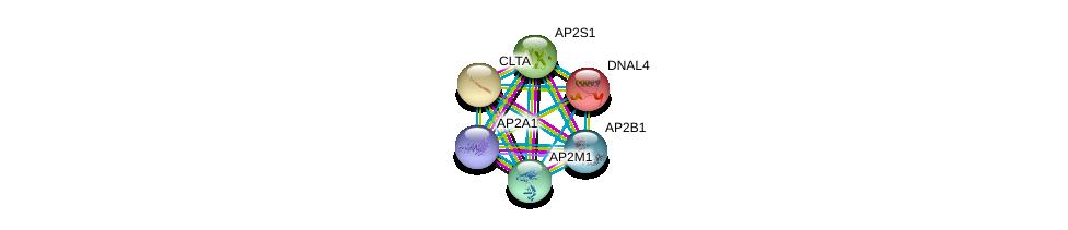 http://string-db.org/version_10/api/image/networkList?limit=0&targetmode=proteins&caller_identity=gene_cards&network_flavor=evidence&identifiers=9606.ENSP00000216068%0d%0a9606.ENSP00000242285%0d%0a9606.ENSP00000263270%0d%0a9606.ENSP00000292807%0d%0a9606.ENSP00000314414%0d%0a9606.ENSP00000351926%0d%0a