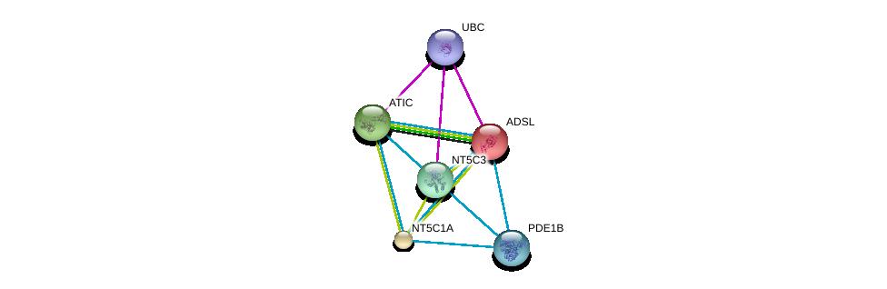 http://string-db.org/version_10/api/image/networkList?limit=0&targetmode=proteins&caller_identity=gene_cards&network_flavor=evidence&identifiers=9606.ENSP00000216194%0d%0a9606.ENSP00000344818%0d%0a9606.ENSP00000235628%0d%0a9606.ENSP00000236959%0d%0a9606.ENSP00000242210%0d%0a9606.ENSP00000243052%0d%0a