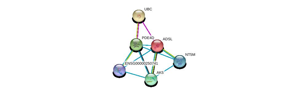 http://string-db.org/version_10/api/image/networkList?limit=0&targetmode=proteins&caller_identity=gene_cards&network_flavor=evidence&identifiers=9606.ENSP00000216194%0d%0a9606.ENSP00000344818%0d%0a9606.ENSP00000373674%0d%0a9606.ENSP00000346577%0d%0a9606.ENSP00000433415%0d%0a9606.ENSP00000345502%0d%0a