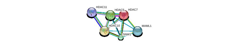 http://string-db.org/version_10/api/image/networkList?limit=0&targetmode=proteins&caller_identity=gene_cards&network_flavor=evidence&identifiers=9606.ENSP00000216271%0d%0a9606.ENSP00000225983%0d%0a9606.ENSP00000080059%0d%0a9606.ENSP00000261531%0d%0a9606.ENSP00000292599%0d%0a9606.ENSP00000295757%0d%0a