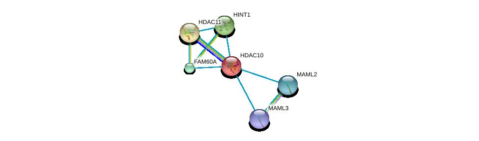 http://string-db.org/version_10/api/image/networkList?limit=0&targetmode=proteins&caller_identity=gene_cards&network_flavor=evidence&identifiers=9606.ENSP00000216271%0d%0a9606.ENSP00000295757%0d%0a9606.ENSP00000337477%0d%0a9606.ENSP00000412394%0d%0a9606.ENSP00000421180%0d%0a9606.ENSP00000304229%0d%0a