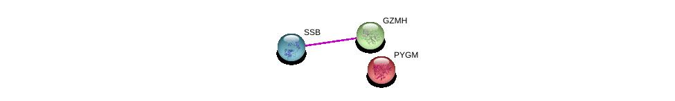 http://string-db.org/version_10/api/image/networkList?limit=0&targetmode=proteins&caller_identity=gene_cards&network_flavor=evidence&identifiers=9606.ENSP00000216338%0d%0a9606.ENSP00000260956%0d%0a9606.ENSP00000164139%0d%0a