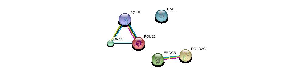http://string-db.org/version_10/api/image/networkList?limit=0&targetmode=proteins&caller_identity=gene_cards&network_flavor=evidence&identifiers=9606.ENSP00000216367%0d%0a9606.ENSP00000322570%0d%0a9606.ENSP00000219252%0d%0a9606.ENSP00000317039%0d%0a9606.ENSP00000297431%0d%0a9606.ENSP00000285398%0d%0a
