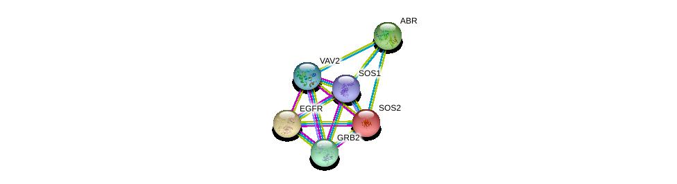http://string-db.org/version_10/api/image/networkList?limit=0&targetmode=proteins&caller_identity=gene_cards&network_flavor=evidence&identifiers=9606.ENSP00000216373%0d%0a9606.ENSP00000339007%0d%0a9606.ENSP00000275493%0d%0a9606.ENSP00000360916%0d%0a9606.ENSP00000384675%0d%0a9606.ENSP00000303909%0d%0a