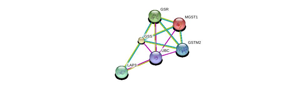 http://string-db.org/version_10/api/image/networkList?limit=0&targetmode=proteins&caller_identity=gene_cards&network_flavor=evidence&identifiers=9606.ENSP00000216951%0d%0a9606.ENSP00000344818%0d%0a9606.ENSP00000010404%0d%0a9606.ENSP00000221130%0d%0a9606.ENSP00000226299%0d%0a9606.ENSP00000241337%0d%0a