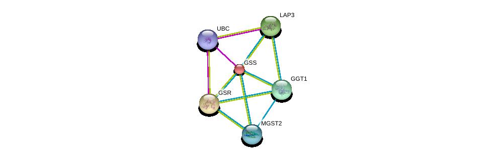 http://string-db.org/version_10/api/image/networkList?limit=0&targetmode=proteins&caller_identity=gene_cards&network_flavor=evidence&identifiers=9606.ENSP00000216951%0d%0a9606.ENSP00000344818%0d%0a9606.ENSP00000221130%0d%0a9606.ENSP00000226299%0d%0a9606.ENSP00000248923%0d%0a9606.ENSP00000265498%0d%0a